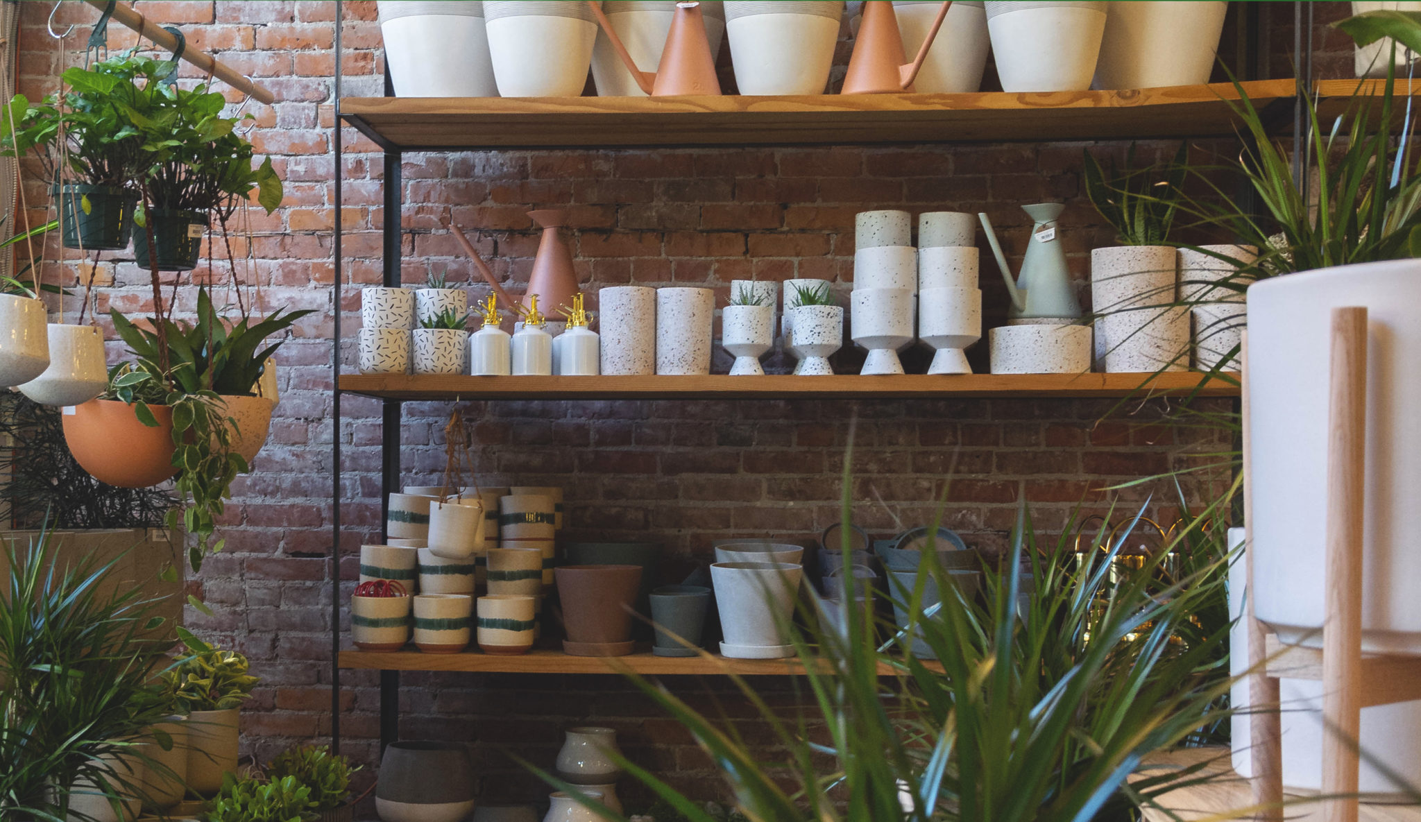Shelves with plant pots and brick wall